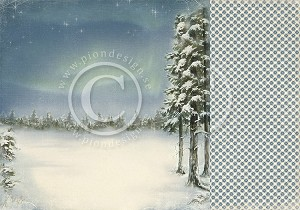 Pion Design Paper - Northern Lights - Winter Time in Lapland